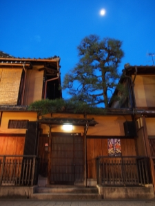 Wooden house with pine tree, in Gion district, Kyoto, Japan.