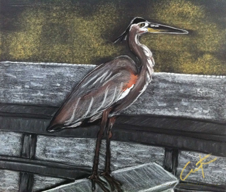 Heron on Hunting Island Fishing Dock Pastel Painting