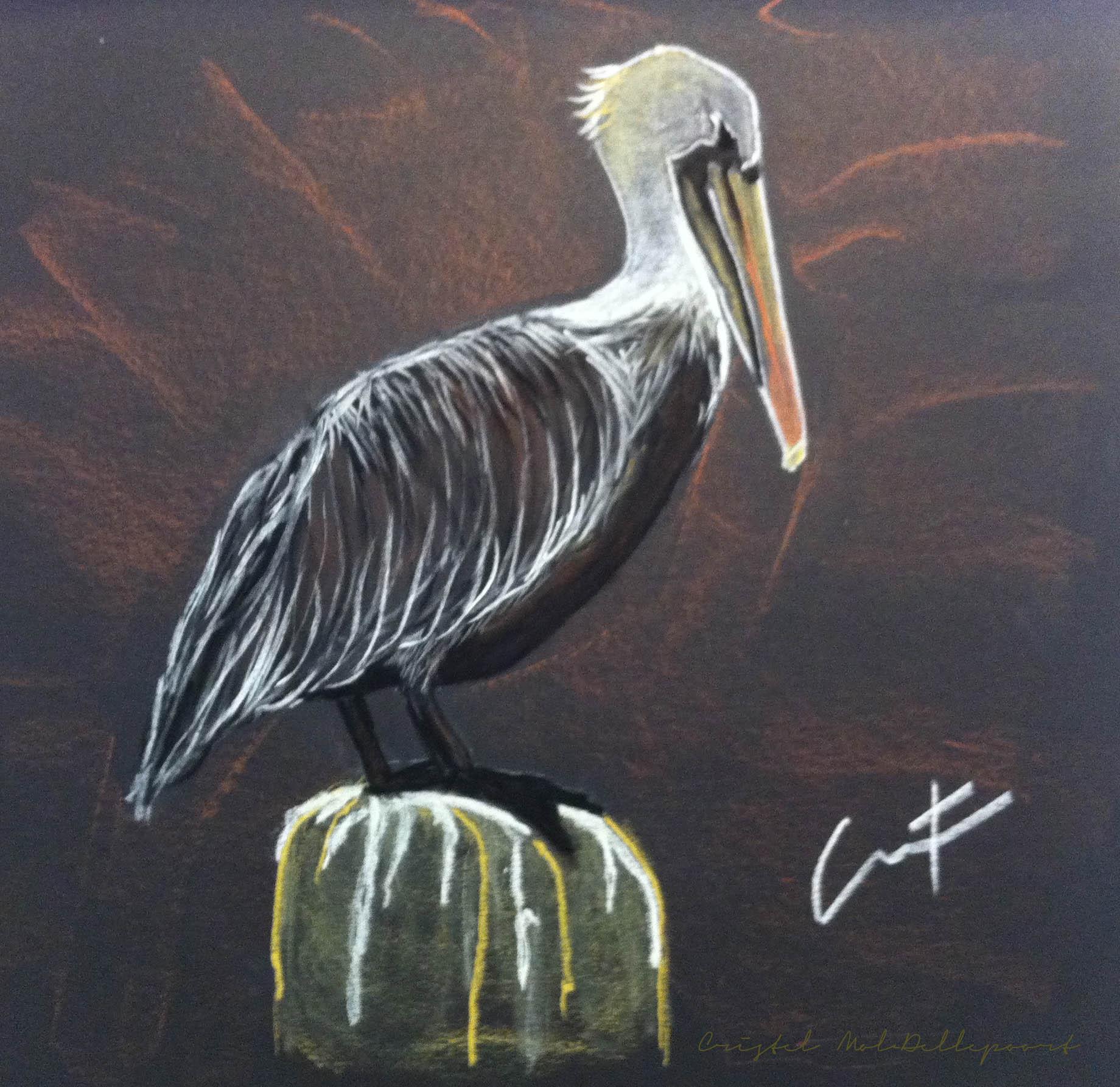 Brown Pelican at Shrimp Dock pastel painting