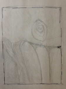 pelican-gaze-pencil-study-cmd