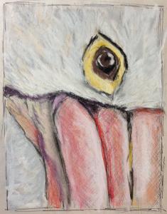 pelican-gaze-study-cmd-pastel