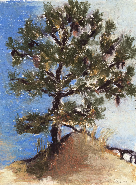 pine-tree-pastel-cmd