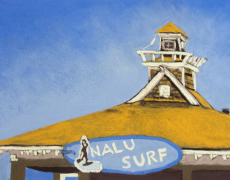 The Nalu Surf Shack