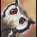 Peekaboo (Owl)