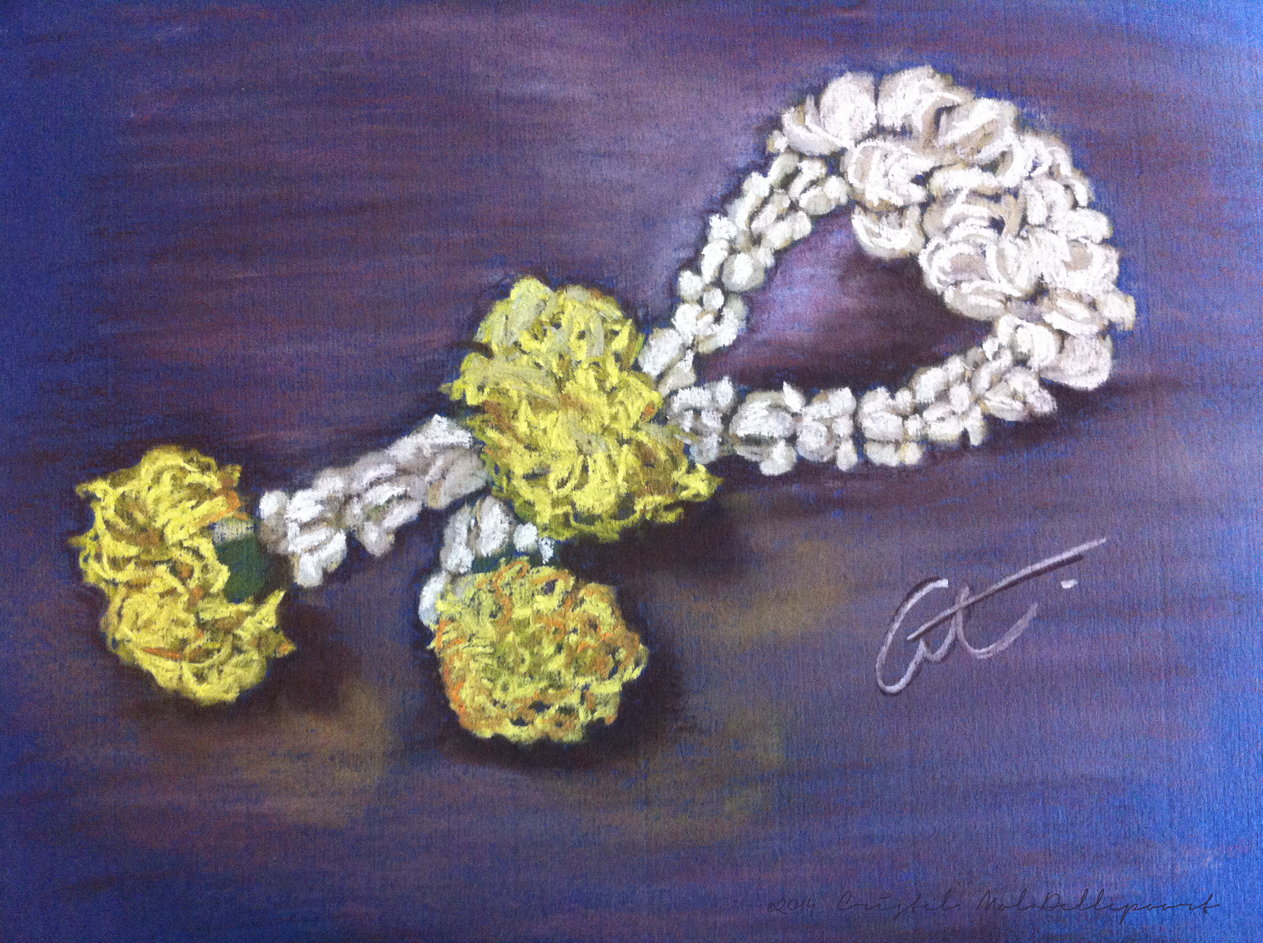 Phuang Malai Thai Jasmine Flower Garland Cristel Mol Dellepoort